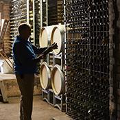 Keith in museum cellar